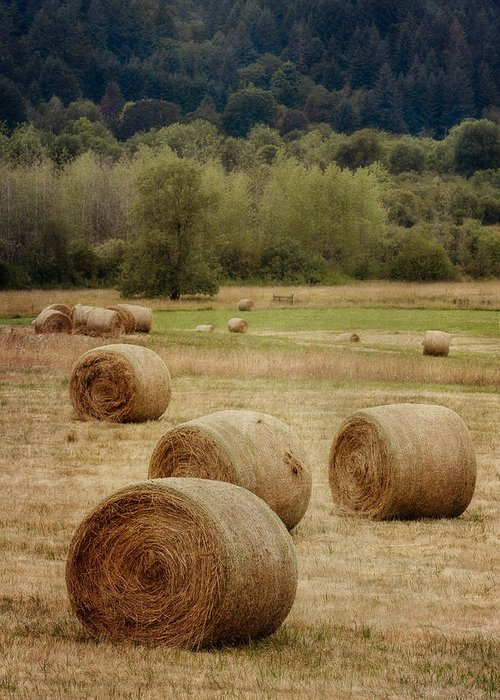 Oregon Greeting Card featuring the photograph Oregon Hay Bales by Carol Leigh