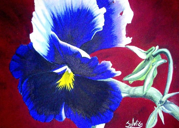 Pansy Print On Canvas Greeting Card featuring the painting Pansy by Sylvie Heasman