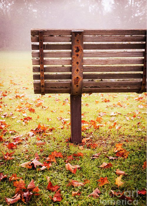 Bench Greeting Card featuring the photograph Park Bench In Autumn by Edward Fielding