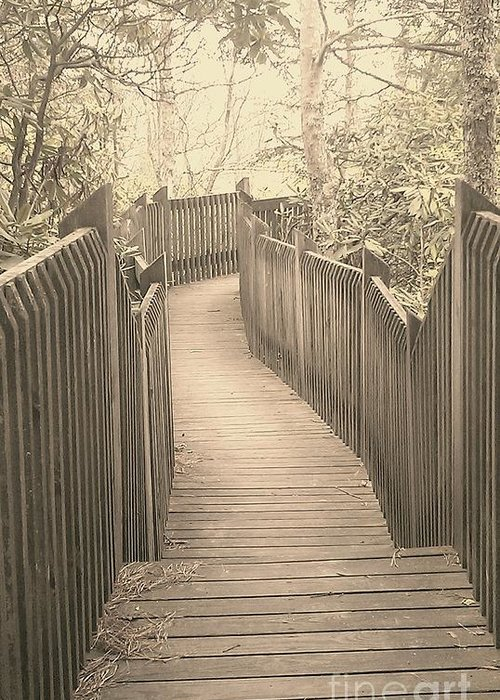 Boardwalk Greeting Card featuring the photograph Pathway by Melissa Petrey