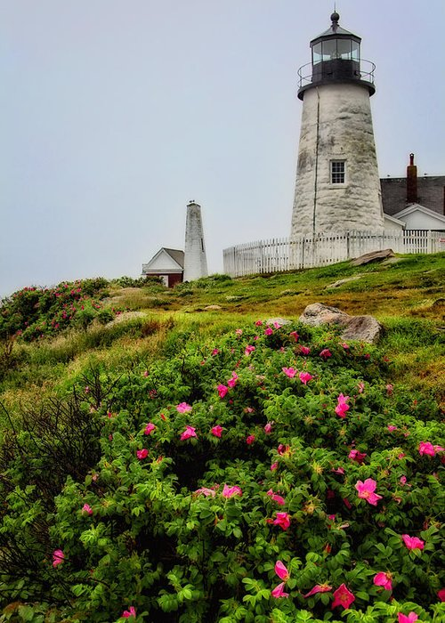 Lighthouse Greeting Card featuring the photograph Pemaquid Point by Karol Livote