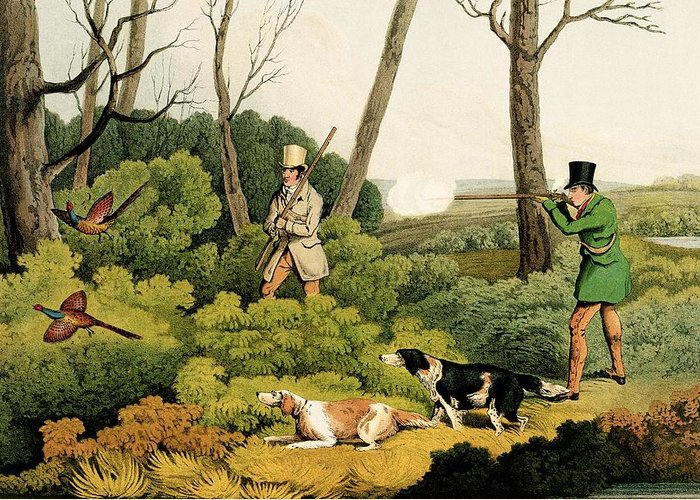 Stalking; Gundog; Walking Up; English Setters; Setter; Working Dog Greeting Card featuring the painting Pheasant Shootin by Henry Thomas Alken