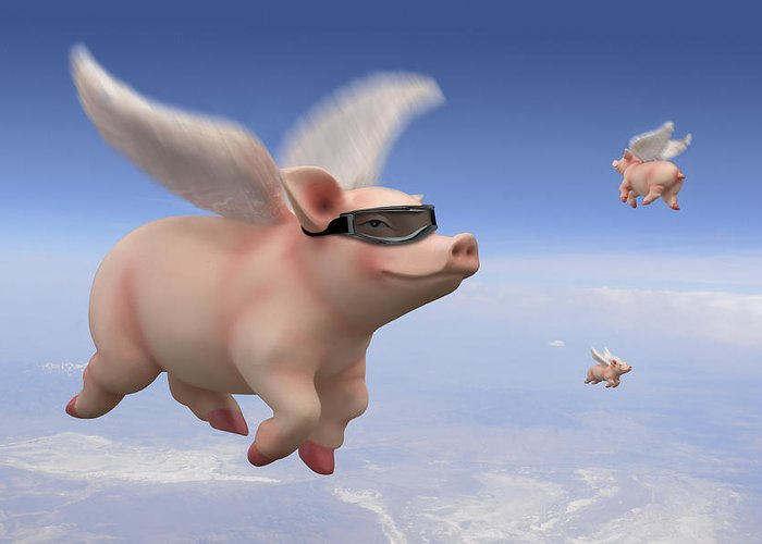 Pigs Fly Greeting Card featuring the photograph Pigs Fly by Mike McGlothlen