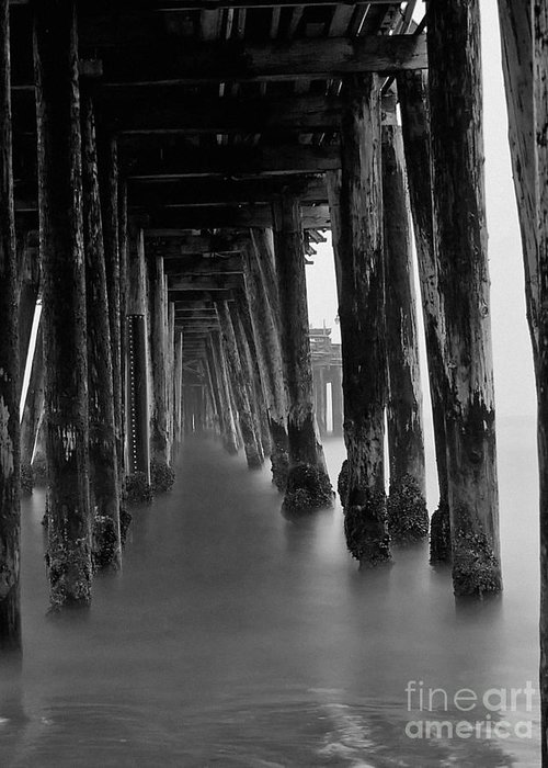Pier Greeting Card featuring the photograph Pillars And Fog 2 by Paul Topp
