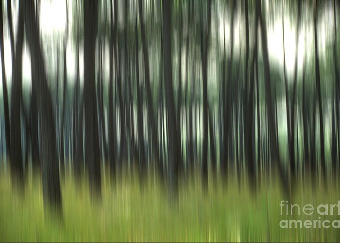 Abstract Artistic Blur Effects Blur Effect Blurred Blurry Coniferous Forests Coniferous Forest Conifers Conifer Daylight Daytime Day Forest Landscapes Forest Landscape Forests Forest Landscapes Landscape Motion Blur Nature Nobody Outdoors Out Of Focus Outside Picture Details Picture Detail Pines Pine Tree Pine Pinus Surreal Trees Tree Trunks Tree Trunk Tree Wood Greeting Card featuring the photograph Pine Forest.blurred by Bernard Jaubert