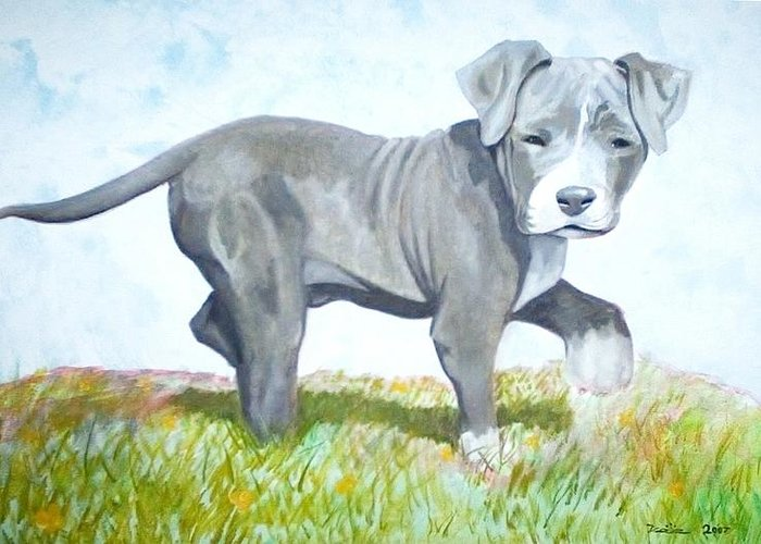 Puppies Greeting Card featuring the painting Pitbull Puppy by Martial Martin