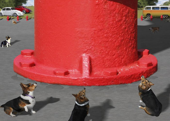 Corgis Greeting Card featuring the photograph Postcards From Otis - The Hydrant by Mike McGlothlen