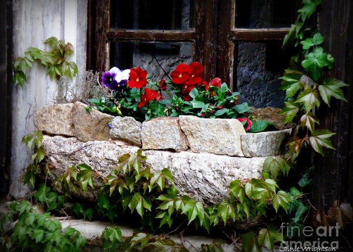 Floral Greeting Card featuring the photograph Quaint Stone Planter by Lainie Wrightson