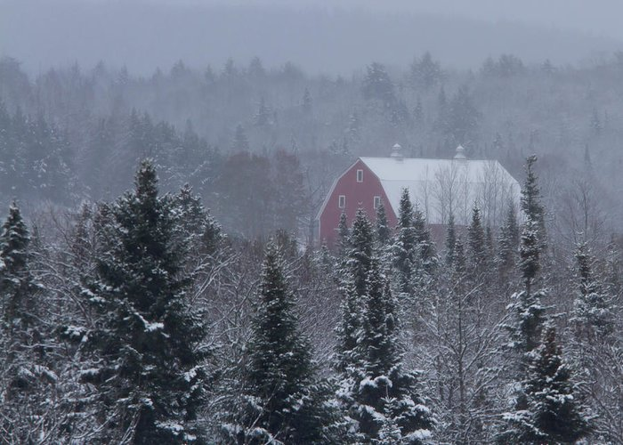 Barn Greeting Card featuring the photograph Red Barn In Maine by Jack Zievis