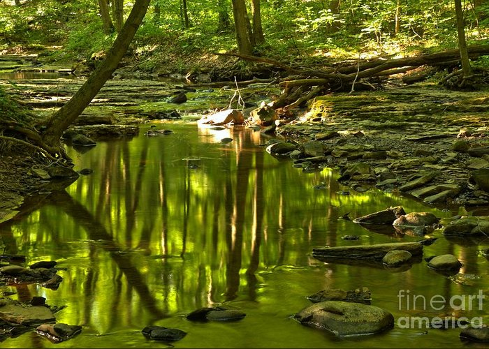 Hells Hollow Greeting Card featuring the photograph Reflections In Hells Hollow Creek by Adam Jewell