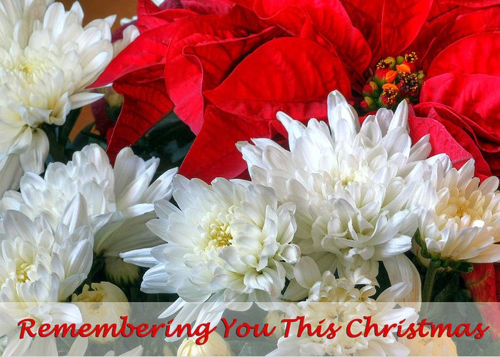 Blessing Greeting Card featuring the photograph Remembering You This Christmas by Dawn Currie