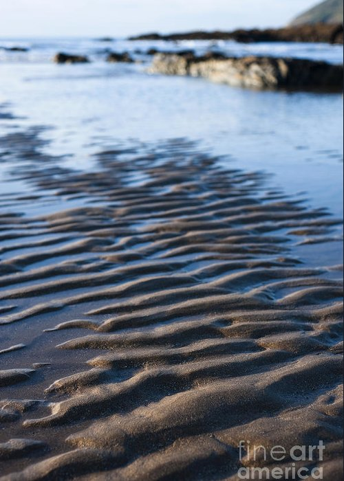 Autumn Greeting Card featuring the photograph Ripples In The Sand by Anne Gilbert