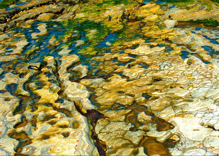 Ripples In Time Greeting Card by Artist and Photographer Laura Wrede