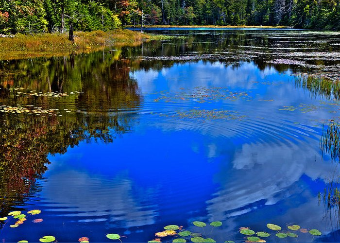 Adirondack's Greeting Card featuring the photograph Ripples On Fly Pond - Old Forge New York by David Patterson