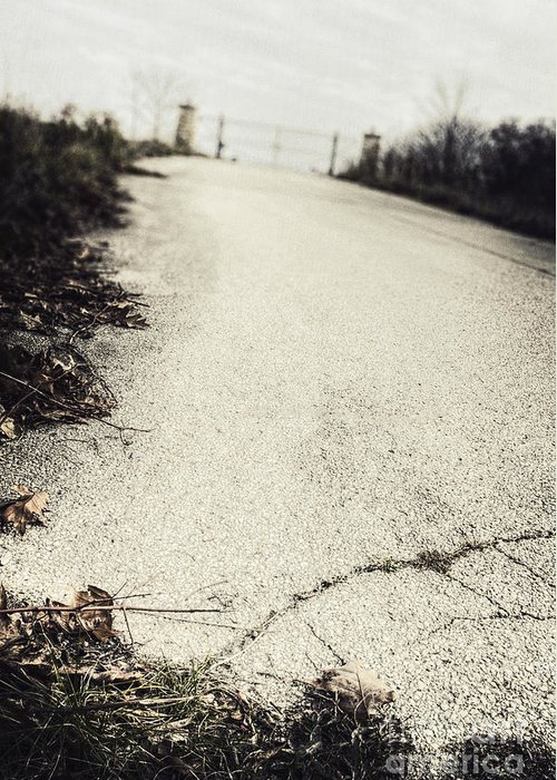 Road Greeting Card featuring the photograph Road Less Traveled by Margie Hurwich