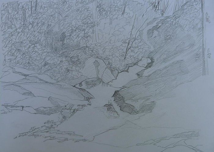 Pisgah National Forest Greeting Card featuring the drawing Roaring Fork Falls - Sketch by Joel Deutsch
