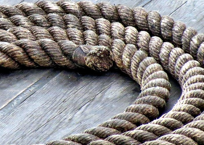 Rope Greeting Card featuring the photograph Rope by Janice Drew