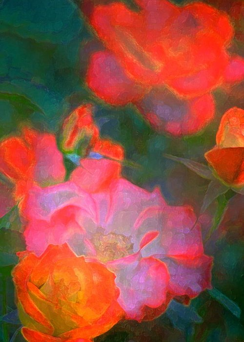Floral Greeting Card featuring the photograph Rose 187 by Pamela Cooper