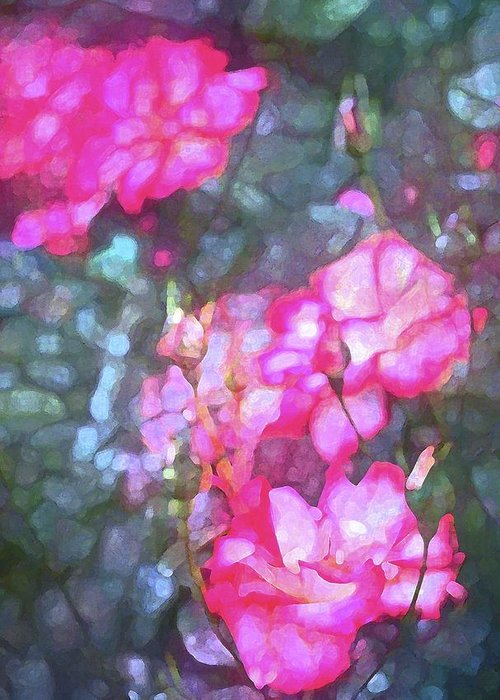 Floral Greeting Card featuring the photograph Rose 188 by Pamela Cooper