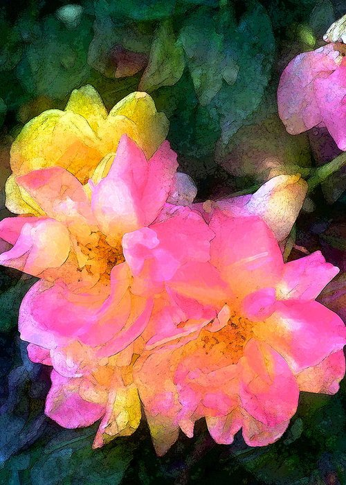 Floral Greeting Card featuring the photograph Rose 211 by Pamela Cooper
