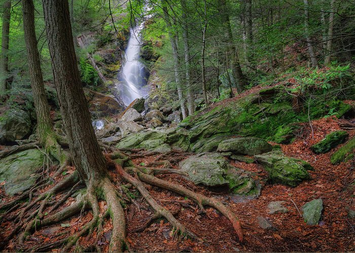 Race Brook Falls Greeting Card featuring the photograph Rough Terrain by Bill Wakeley