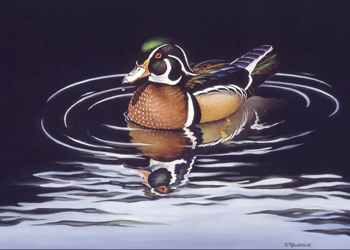 Duck Greeting Card featuring the painting Royal Reflections by Richard De Wolfe