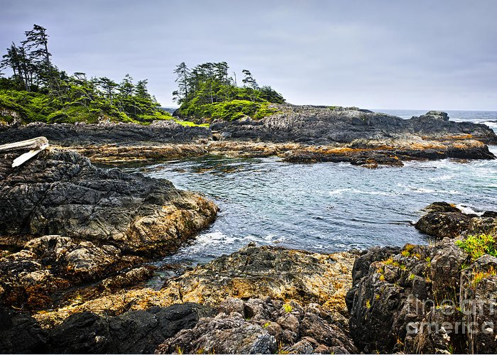 Pacific Greeting Card featuring the photograph Rugged Coast Of Pacific Ocean On Vancouver Island by Elena Elisseeva