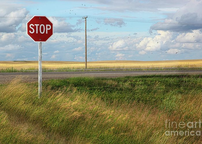 Attention Greeting Card featuring the photograph Rural Stop Sign On The Prairies by Sandra Cunningham
