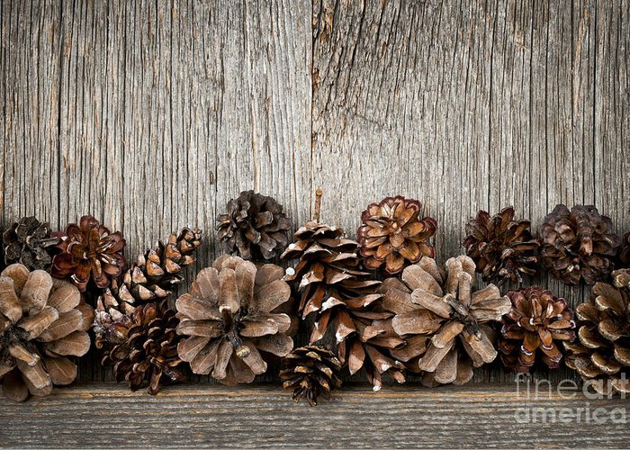 Wood Greeting Card featuring the photograph Rustic Wood With Pine Cones by Elena Elisseeva