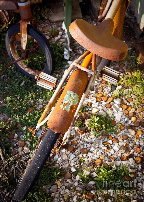 Old Bike Greeting Card featuring the photograph Rusty Bike Bumper by Sonja Quintero