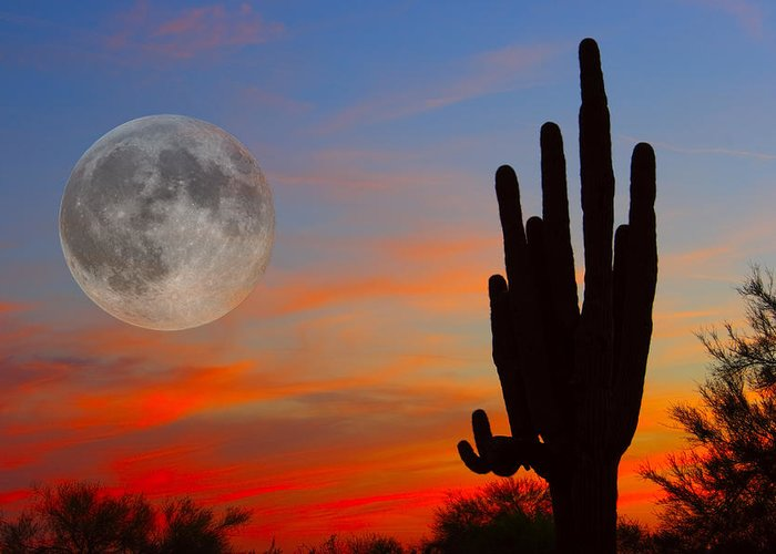 Sunrise Greeting Card featuring the photograph Saguaro Full Moon Sunset by James BO Insogna