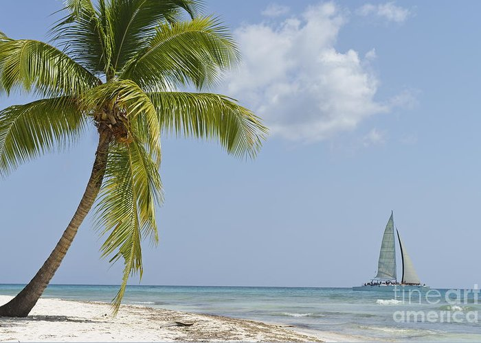 Getting Away From It All Greeting Card featuring the photograph Sailboat Passing By Tropical Beach by Sami Sarkis