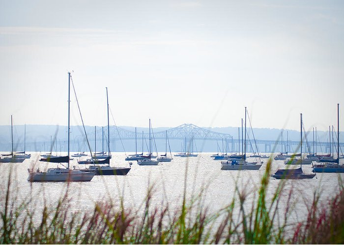 Sailboats Greeting Card featuring the photograph Sailboats At Rest by Bill Cannon