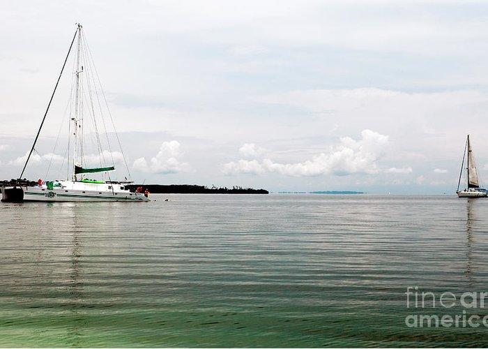 Sailing At Star Beach Greeting Card featuring the photograph Sailing At Star Beach by John Rizzuto