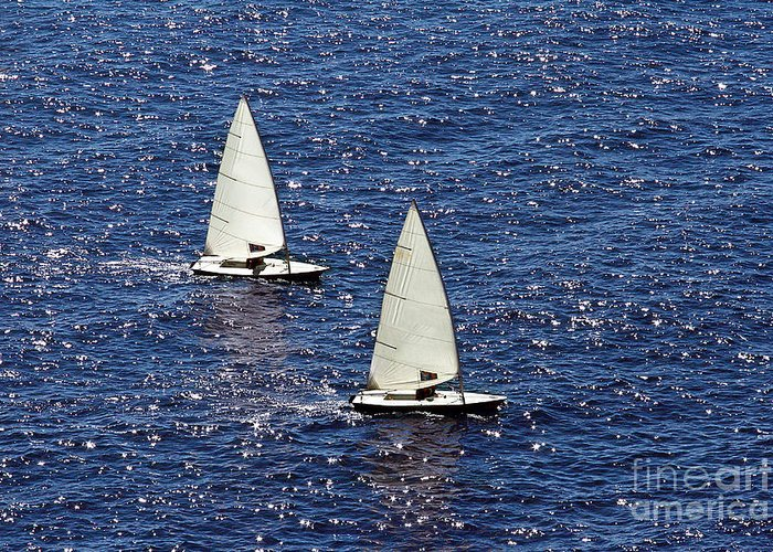 Sail Greeting Card featuring the photograph Sailing by Lars Ruecker