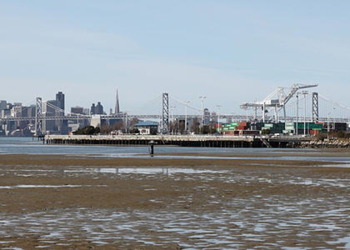 San Francisco Greeting Card featuring the photograph San Francisco Skyline And The Bay Bridge Through The Port Of Oakland 5d22238 by Wingsdomain Art and Photography