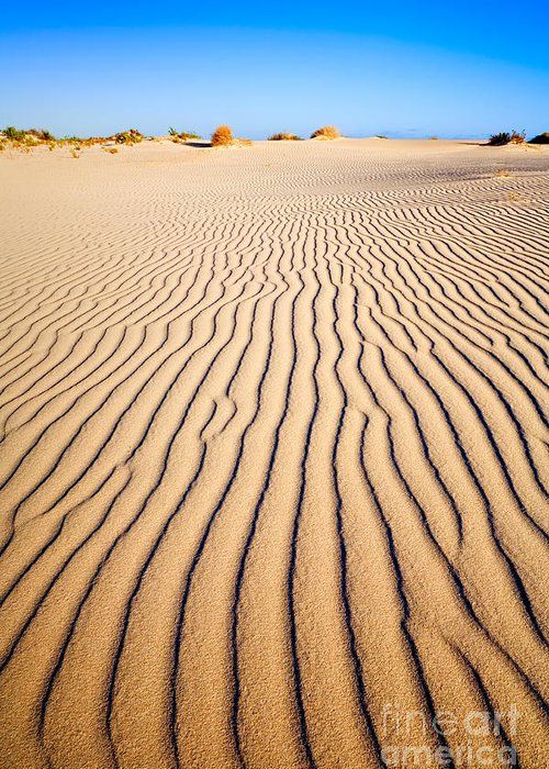 Sand Greeting Card featuring the photograph Sand Dunes At Eucla by Colin and Linda McKie