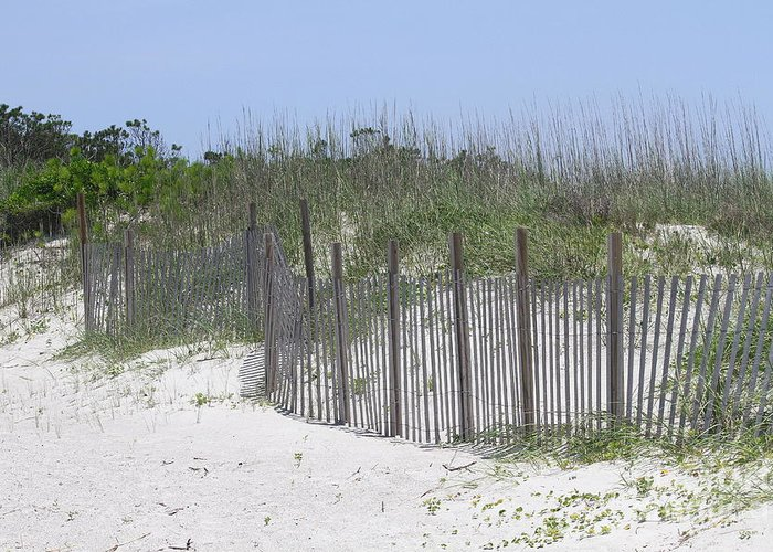 Obx Greeting Card featuring the photograph Sand Fence At Cape Lookout by Cathy Lindsey