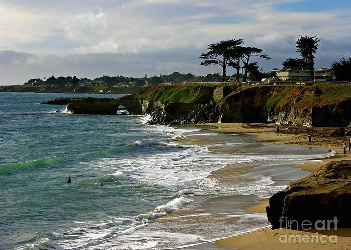 Santa Cruz Greeting Card featuring the photograph Santa Cruz Beach by Carol Groenen