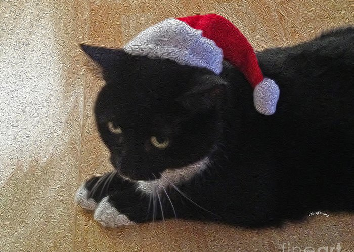 Santa Greeting Card featuring the photograph Santa Kitty by Cheryl Young