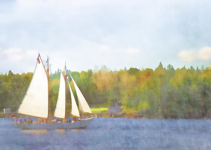 Schooner Greeting Card featuring the photograph Schooner Castine Harbor Maine by Carol Leigh