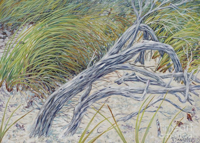 Beach Greeting Card featuring the painting Sculpted By The Wind by Danielle Perry