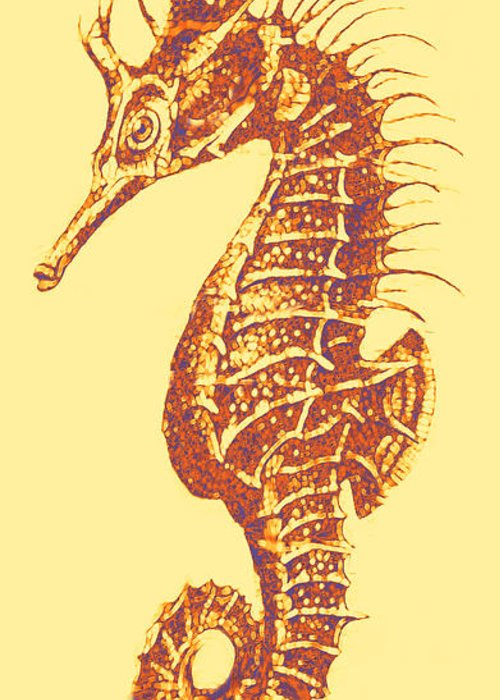 Seahorse Greeting Card featuring the digital art Seahorse - Right Facing by Jane Schnetlage