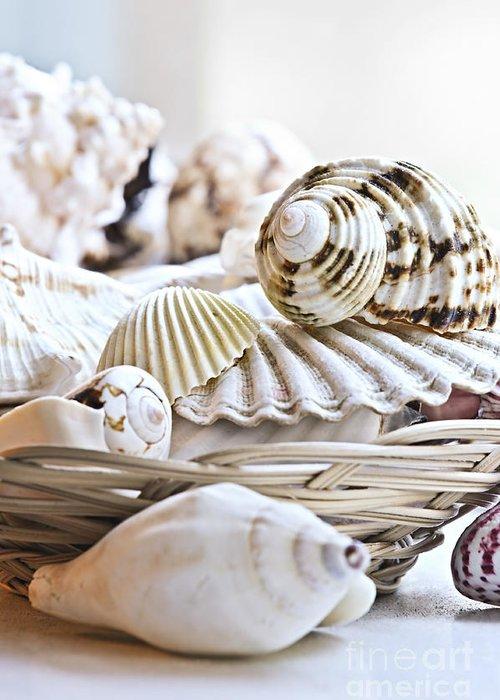 Seashell Greeting Card featuring the photograph Seashells by Elena Elisseeva