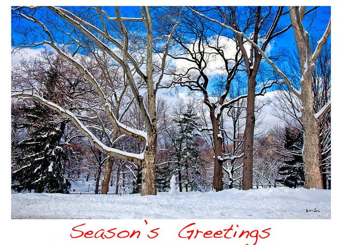 Season's Greetings Greeting Card featuring the photograph Season's Greetings by Madeline Ellis