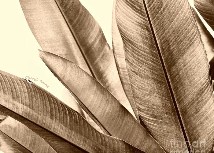 Leaves Greeting Card featuring the photograph Sepia Leaves by Cheryl Young
