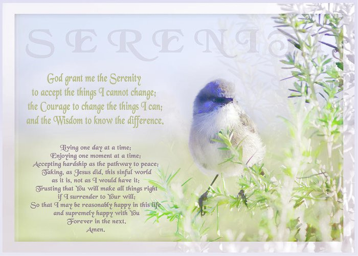 Animals Greeting Card featuring the photograph Serenity Prayer by Holly Kempe