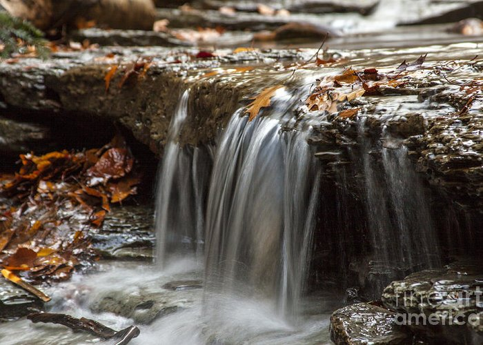 Waterfall Greeting Card featuring the photograph Shale Creek In Autumn by Darleen Stry