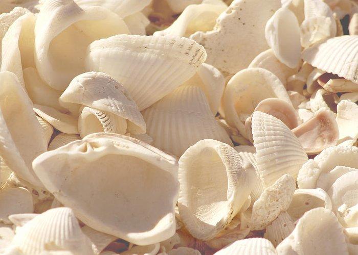 Seashells Greeting Card featuring the photograph She Sells Seashells by Kim Hojnacki
