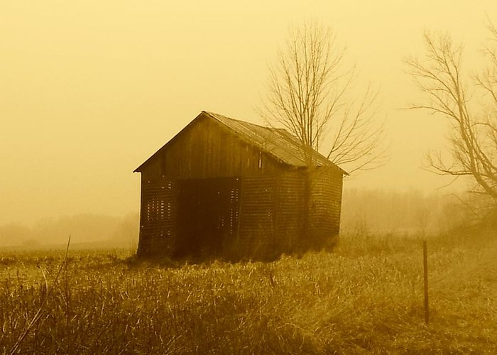 Barn Greeting Card featuring the photograph Shed In Field by Michael L Kimble